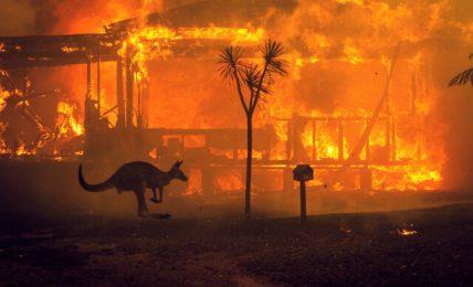 Incendi in Australia: il supporto delle grandi imprese