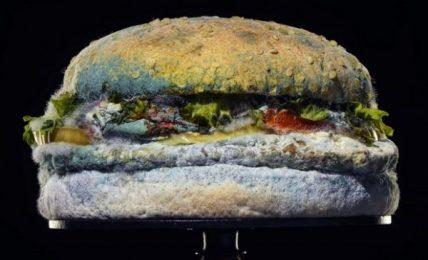 Burger King e l'advisoring alternativo