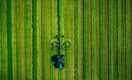 Green Deal anche l'Europa verso sostenibilità e biodiversità